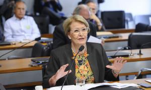 Ana Amélia faz apelo por reação do governo caso União Europeia restrinja compra de carne de frango