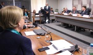 Crescimento do protecionismo exige atitude mais enérgica da diplomacia brasileira, diz Ana Amélia