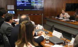 Ana Amélia diz que disparidades regionais e desinformação influenciam desempenho do PAA