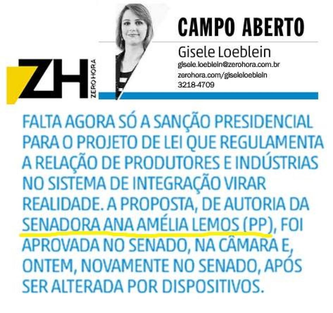 Zero Hora: Campo Aberto - NO RADAR