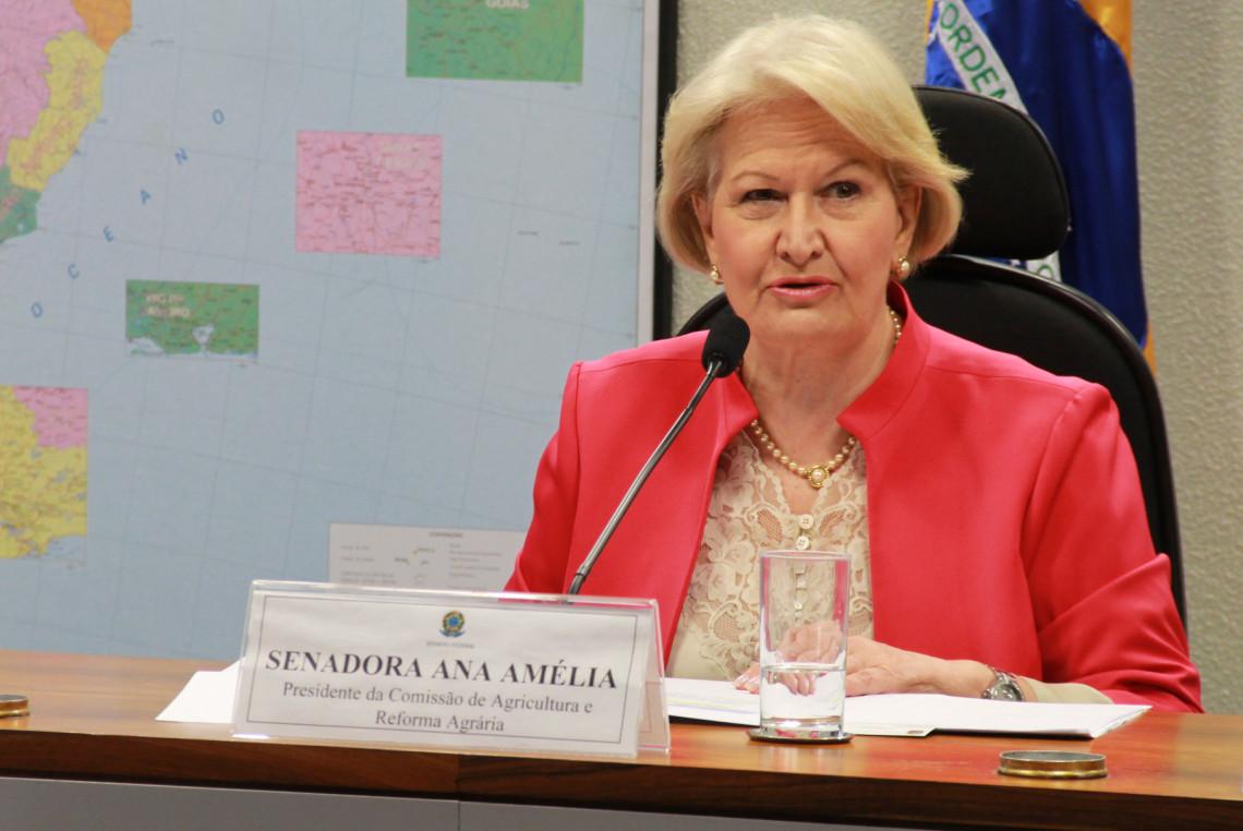 Ana Amélia destaca aprovação da PEC que estabelece indenização para terras declaradas indígenas