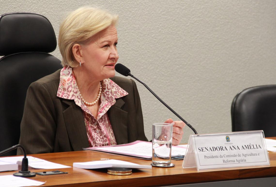 Comissão de Agricultura do Senado debate, em Alegrete, a guerra fiscal dos Estados