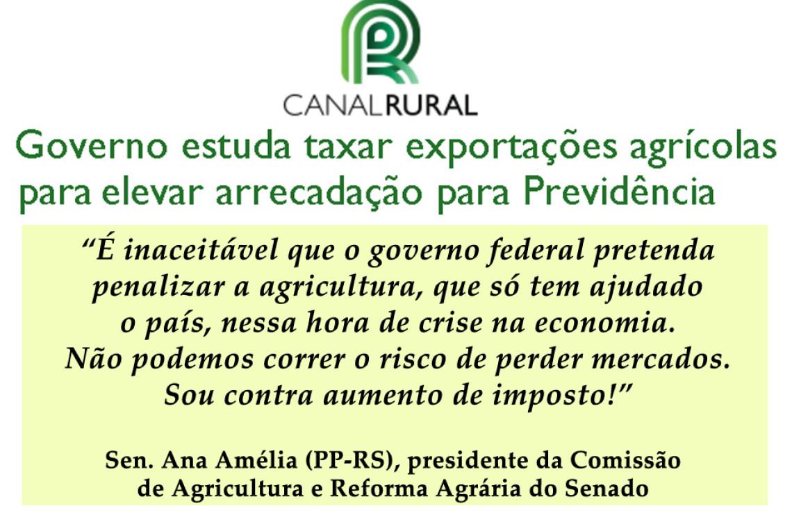 Ana Amélia manifesta posição contra taxação de exportações agrícolas estudada pelo governo