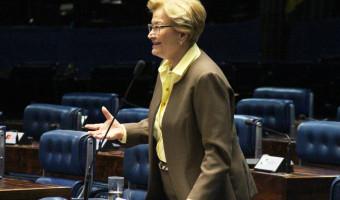 No Plenário, Ana Amélia defende sanção da lei que inclui setor de bebidas artesanais e caseiras no Simples