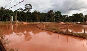"""""""Noruega deve desculpas ao Brasil por crime ambiental na Amazônia"""", diz Ana Amélia"""