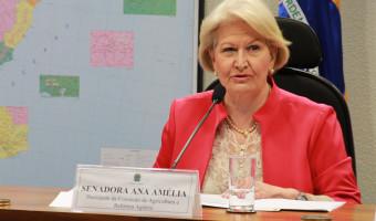 Comissão de Agricultura do Senado realiza debate na Expointer no próximo dia 4