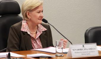 Comissão de Agricultura e Reforma Agrária aprova projeto que reduz custo para renegociação de dívidas rurais