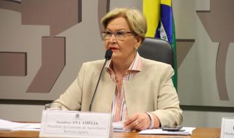 Comissão de Agricultura recebe parlamentares e empresários ucranianos quarta-feira
