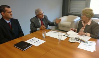 Coordenador do Comdefesa da Fiergs relata iniciativas na área em reunião com a senadora