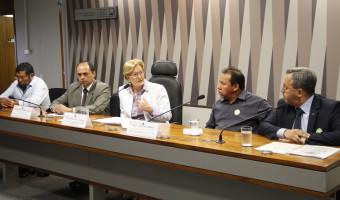 Debate aponta vantagens de parceria agrícola em terra indígena no RS