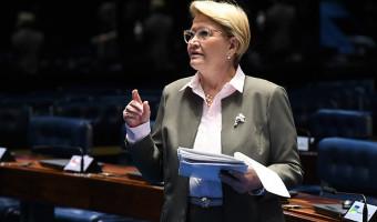 Senado aprova novo limite para compra de leite de pequenos agricultores