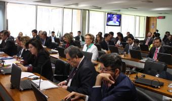 Ana Amélia diz que vai votar com 'consciência livre' no impedimento de Dilma Rousseff