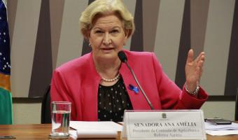 Investimentos nos setores agropecuário e de saúde estão entre as emendas apresentadas ao PPA