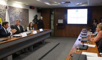 Grupo Parlamentar Brasil-Argentina é instalado no Senado