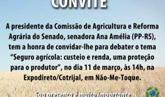 Comissão de Agricultura do Senado promoverá debate na Expodireto/Cotrijal, dia 11, em Não-Me-Toque