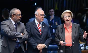 Senado aprova projeto para desenvolvimento da metade sul do Rio Grande do Sul